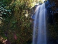 panama-boquete-waterfall-trail-waterf